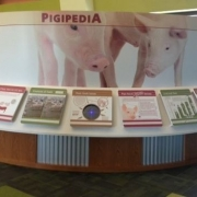 SpecialtyPig Museum Wall